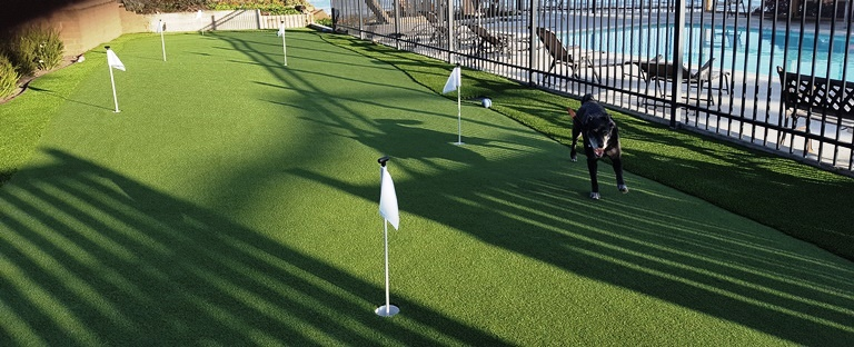 TrurfAvenue.com_putting green_Kit